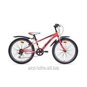 Велосипед горный Rocky Junior 1.0 фото