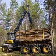 Лесозаготовительная техника. фото