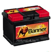 Аккумулятор Banner Power Bull 74Ah фото