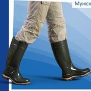 Сапоги резиновые модные самый широкий ассортимент обуви, на основе ПВХ-композиций. фото