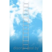 Лестницы односекционные приставные фото