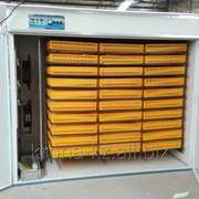 Инкубатор на 2640 куриных яиц фото