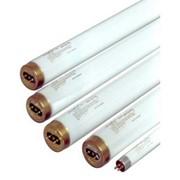 Ультрафиолетовая лампа UV SYLVANIA 15W фото