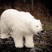 Чучело белого медведя фото
