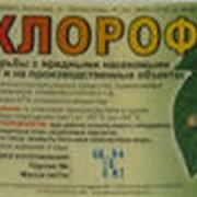 Средство от насекомых-Хлорофос фото