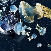 Часы для дайвинга, купить Украина фото