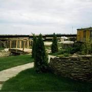 Газон, озеленение фото