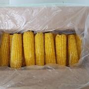 Вареная кукуруза в початках фото