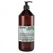 Dikson Dikson Восстанавливающий шампунь (EveryGreen / Rebalancing Shampoo Seboregolatore) 5227 1000 мл фото