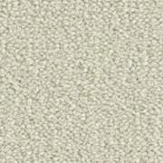 Ковровые покрытия Balsan Les Best III 610 фото