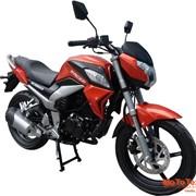 Мотоцикл спортивный Racer Fighter RC250CR-N фото