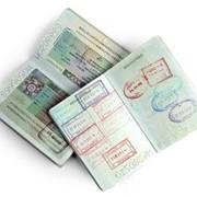 Шенгенская виза в Польшу, сроком 180/360 фото