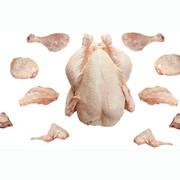 Куриная и свиная разделка фото