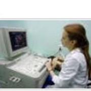Ремонт медицинского оборудованияв Украине, Киев...Для функциональной диагностики фото