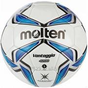 Мяч футбольный Molten IMS FIFA фото