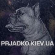 Захоронение животных, кремация животных, захоронение животных Киев фото