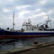 Траулер средний рыболовный - сейнер проекта 502ЭМ. фото