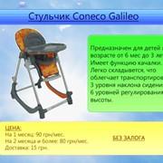 Прокат стульчиков для кормления. фото