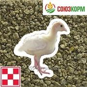 Комбикорм Стартер 2 для индеек 3 - 8 недель Purina фото