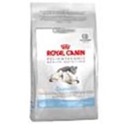 Корм для котов Royal Canin Queen фото