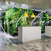 Вертикальное озеленение стен искусственной травой нового поколения фото