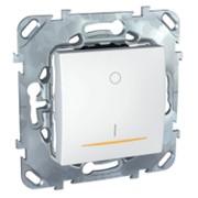 Выключатель Unica Выкл.1-кл. двухполюсный 16A с контр. ламп. MGU5.262.18SZD фото