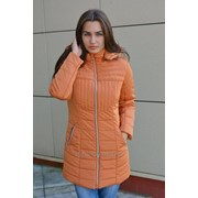 Пальто демисезонное для девочки модель 4419И фото