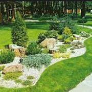 Ландшафтное проектирование сада с учетом геопатогенных зон. Ландшафтный дизайн фото