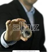 Опыт и профессионализм бизнес аудит фото