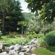 Экскурсии в Никитский ботанический сад фото