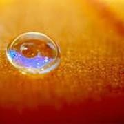 Покрытия и материалы защитные Scotchgard™ Алматы, покрытия и материалы защитные фото
