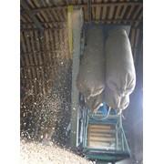 Очистка зерна от сорных примесей. Северо-Казахстанской Области фото