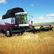 Комбайн зерноуборочный Acros 595 Plus фото