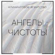 Химчистка мебели и ковров. фото