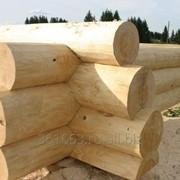 Рубка срубов для дома и бани! фото
