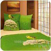 Bed set for 1,5-2 prs./Постельный комплект 1,5 -2 фото