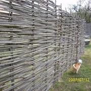 Забор из лозы изгородь фото