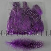 Перья фиолетовые с горохом 5-10 см ~50 шт 570400 фото
