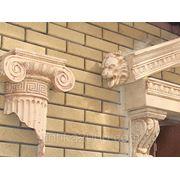 Водосток Лев фото