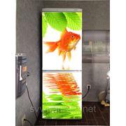 Наклейки на холодильник. Яркие краски нового интерьера фото