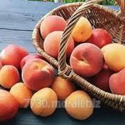 Персики фото