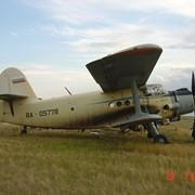 Химическая обработка самолетом АН-2 фото