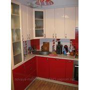 """Кухня """" Красный мак """" 3200х2600 фото"""
