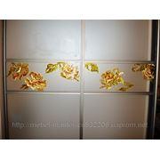 Художественная роспись для шкафов-купе 005 фото