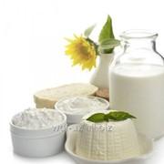 Оборудование для производства йогурта, крема и творога фото