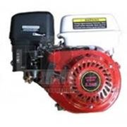 Двигатель Протон 160F фото