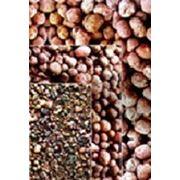 Керамзит М450 фр. 10-20 ( фас.0,04 м3 ) фото