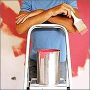 Шпатлевка, откосы, побелка, покраска, обои! фото