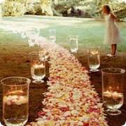 Свадебный декор и флористика фото