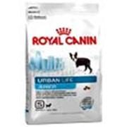 Корм для собак Royal Canin Urban Life Junior Small Dog фото